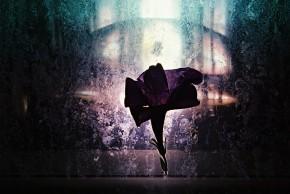 Flower_Silouette_01